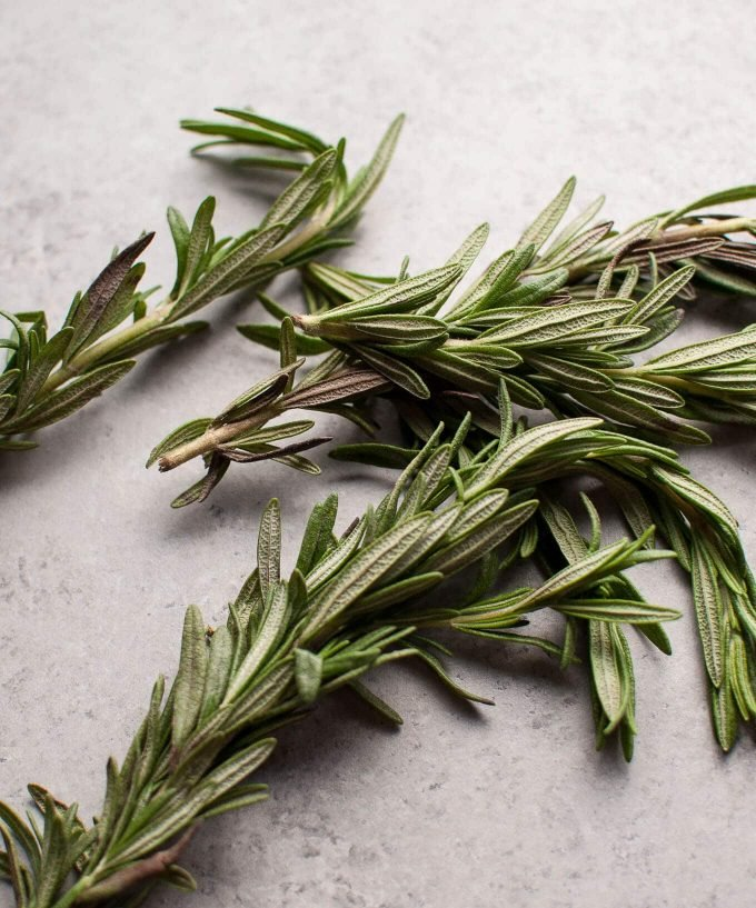 close-up of rosemary sprigs