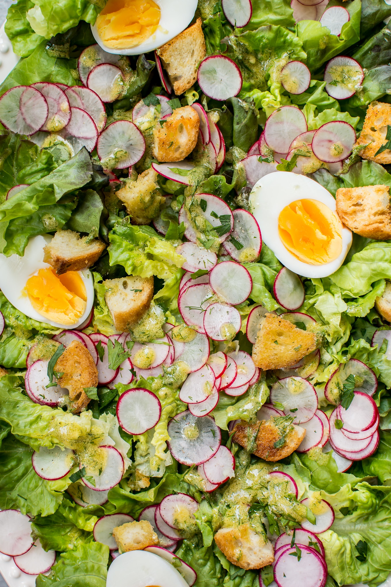 This Butter Leaf Lettuce Salad With A Lemon Dill Dressing Garlic Croutons Hard