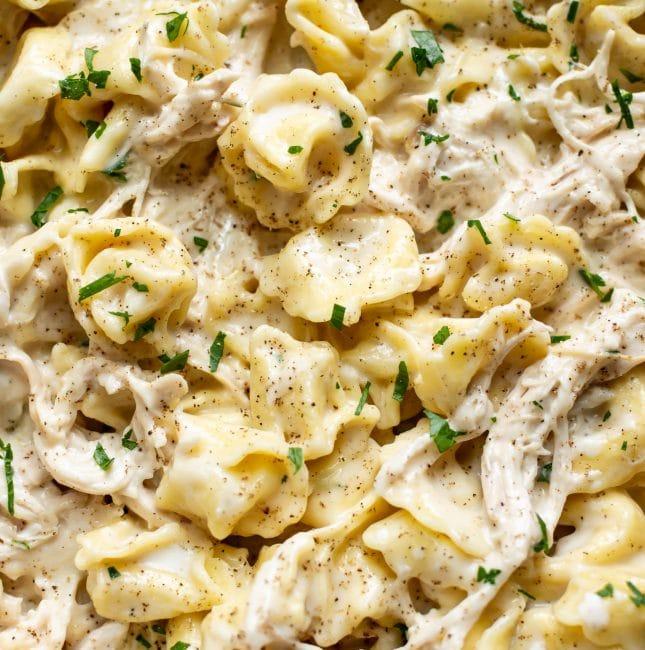 closeup of garlic tortellini Alfredo with chicken