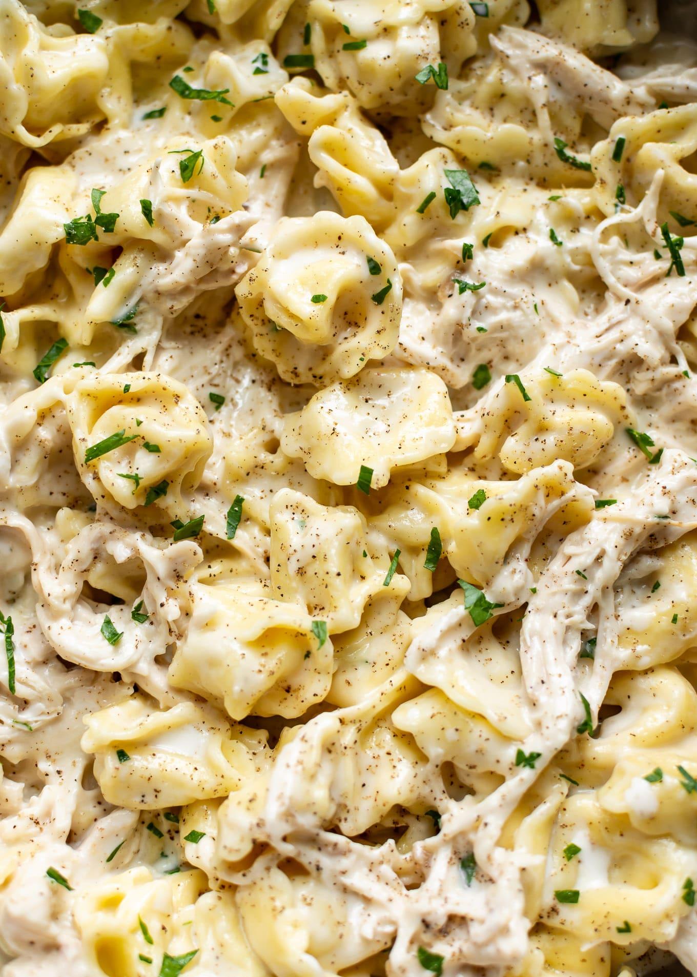 Chicken Tortellini Alfredo Salt Amp Lavender