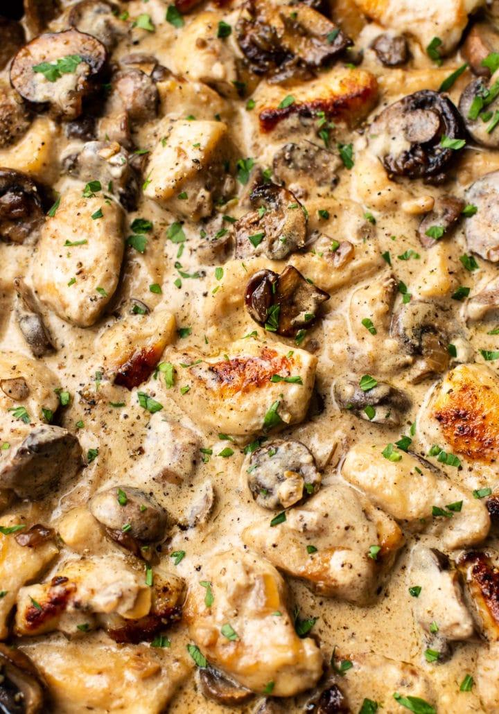 close-up of the BEST chicken stroganoff