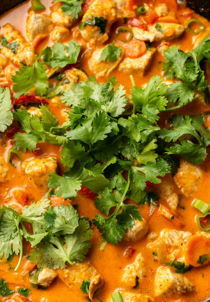 close-up of Thai red chicken curry