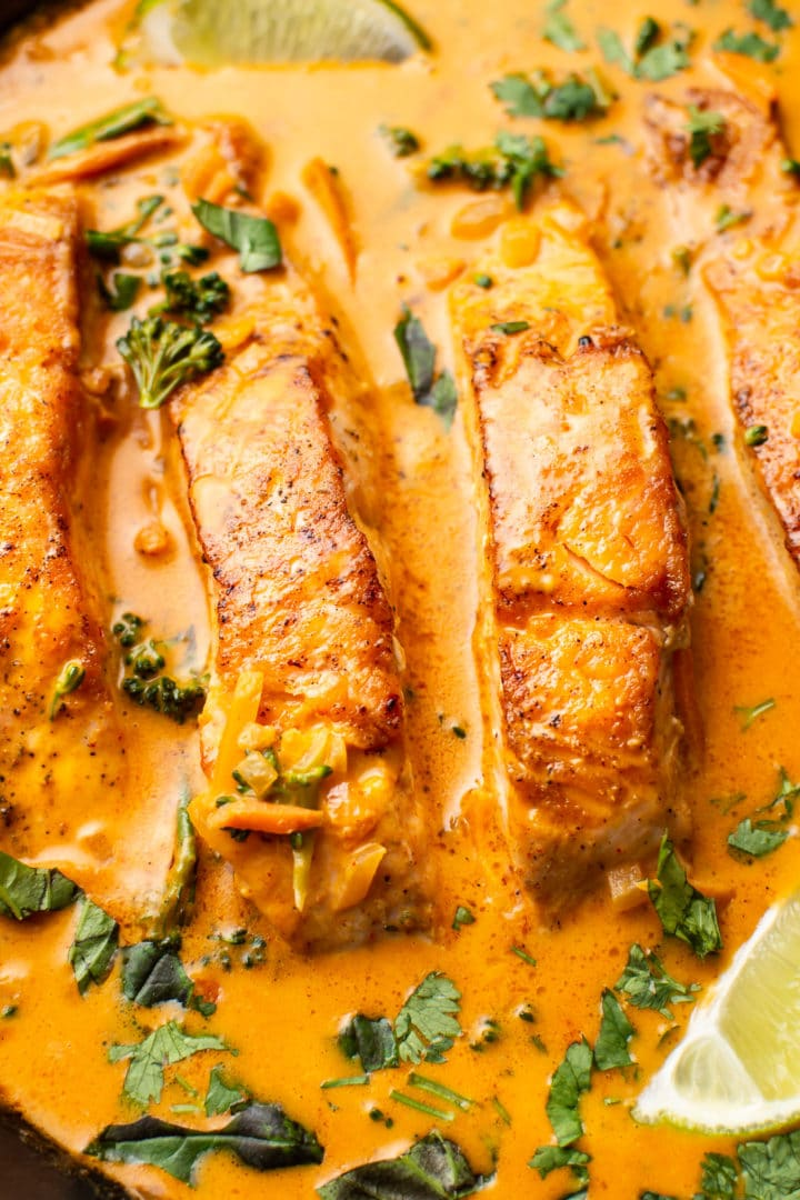 close-up of salmon coconut curry